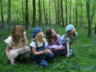 Bluebell_foursome_shot_crouching_down_small2