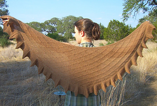 Old_oaks_shawl__master_photo_small2