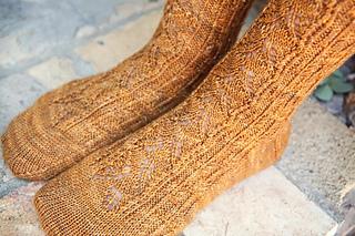 Socks4__800x533__small2
