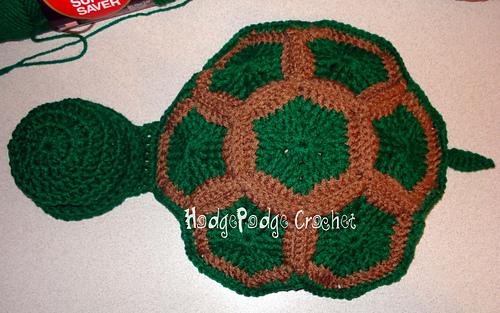 Turtle3_018_medium