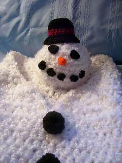 Snowcocoon_small2