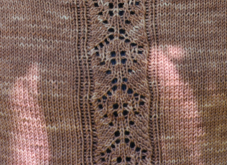 Lace_detail_crop_small2