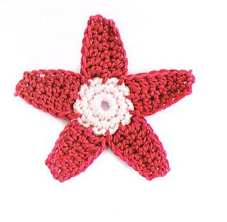 Star_flower_small2