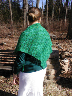 Green_shawl_3_small2