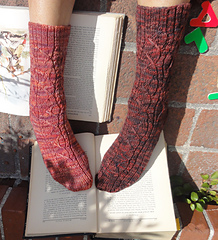 Bothsocksfront01a_small