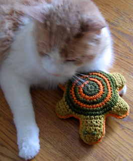 Pet_toy_turtle_with_andrew_small2