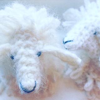 Sheep5_small2