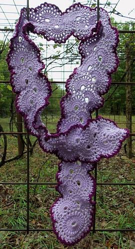 Queen_anne_purple_medium