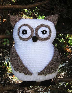 Owl_sep_2011_small2