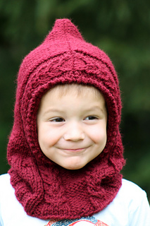Little_red_hooded_cowl_cover_small2