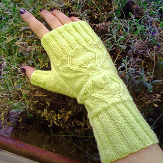 Arachnid-mitts-tuesdays-october-6-and-13th-6-8pm_small2