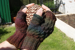 Img040_strobilus_mitts_small2
