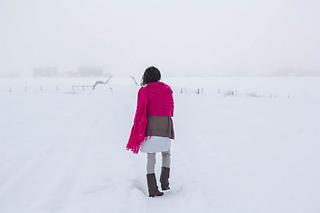 Bramble_in_the_snow-11_small2