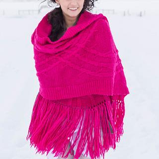 Bramble_in_the_snow-15_small2