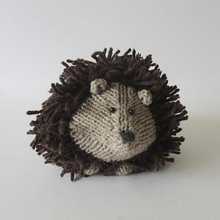 Tweedy_hedgehog_img_0989_small2