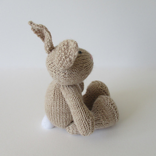 Nibbles_the_bunny_img_2493_small2