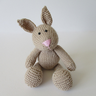 Nibbles_the_bunny_img_2483_small2