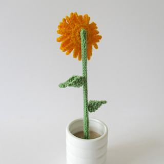 Sunflower_img_5031_small2