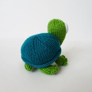 Spencer_the_tortoise_img_9389_small2