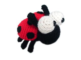 Ladybug3_small2