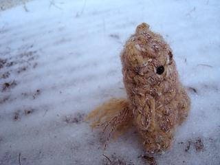 Groundhog_006_small2