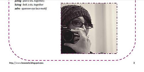 Sparrow-eye-hat-pattern_medium2_medium
