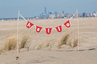 11-8-2014__hi_jenny_brown__banner_beach_photos216_small2