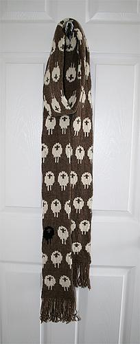 K-sheep1_medium