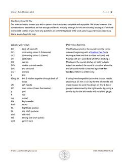 Vixens_run_moebius_pattern_2013-04-29_v1