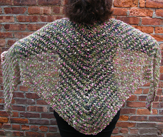 Springshawl1979_small2