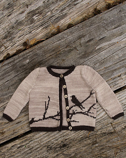 Bird-cardigan_small2