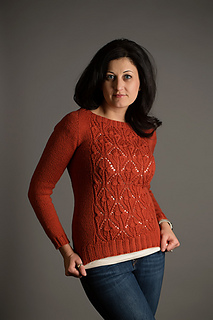 Papillon_sweater-1_copy_small2