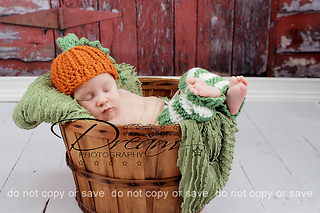 Pumpkin_set_small2