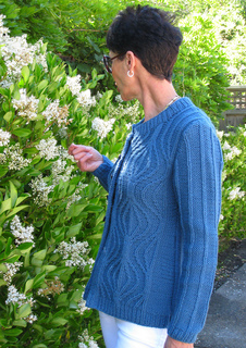 Gyro_cardi_blue_outside_1_small2