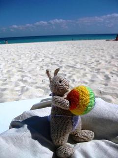 Beach_bunny_small2