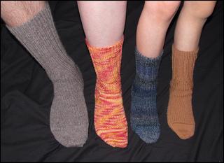 Family_of_socks_small2