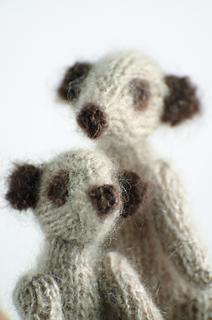 Meerkats490_small2