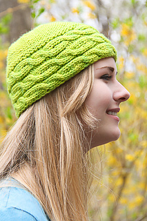 Shecat_applegreen_the_knitting_vortex_small2