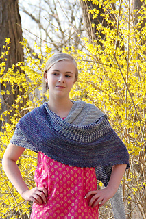 Sundry_with_forsythia_the_knitting_vortex_small2