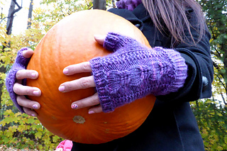 Hollyhockfingerlesspurple2edit_small2