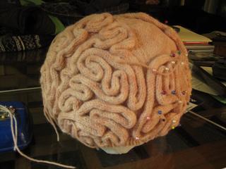 Brain_hat_3_small2