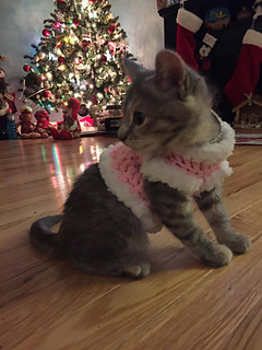 Ravelry Crochet Kitten Sweater Pattern By Lauralee Wellman