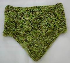 Leafybandana060315-001_small