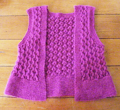 Cropped_vest_2_small