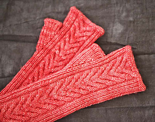 Staghorn-mitts-2_small2