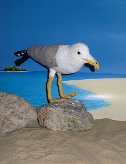 My_pet_seagull4_small2