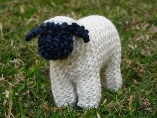 Sheep_small2