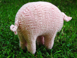 Pig1_small2