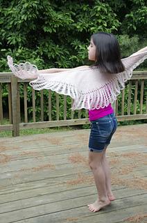 Hawkwings_dsc3818_small2
