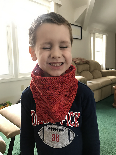 Mallard cowl modeled